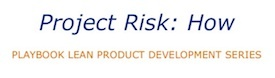 How to Manage Project Risk